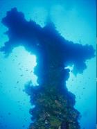 揭秘太平洋海底全球最大船舶墓地