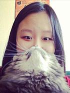 猫咪胡须照引模仿热潮