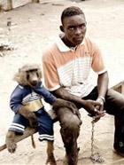非洲人养的宠物,好生猛啊