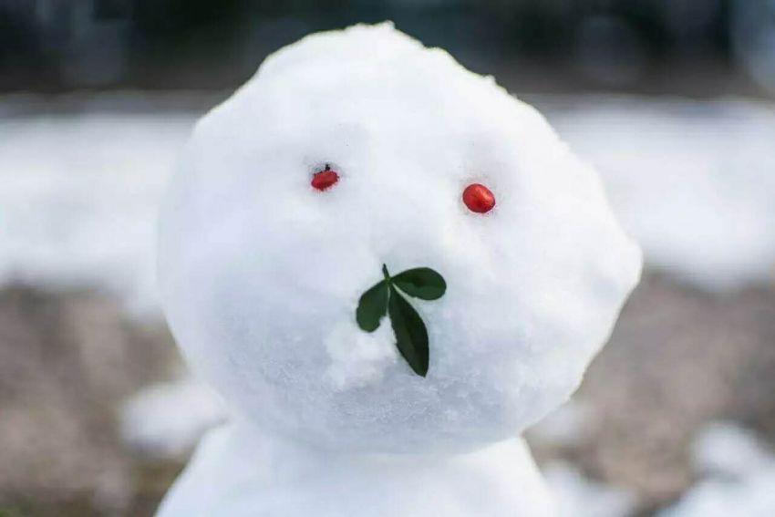【小狐狸】和Joyye一起赏雪的美食日常